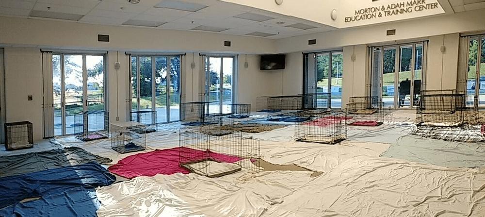 Shelter Set Up With Kennels for Transports