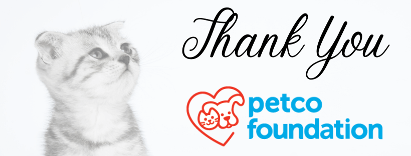 thank you petco foundation