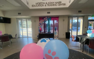 pink and blue decorated center