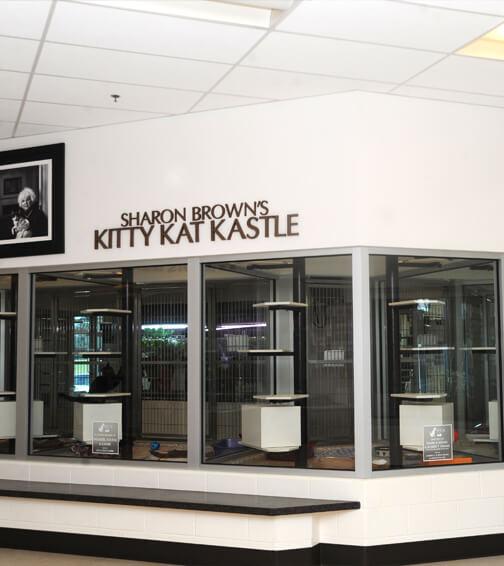 kitty kat kastle