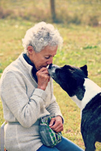 Dog & Person